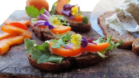 Apricot, Goat's Cheese Tartine with Violas
