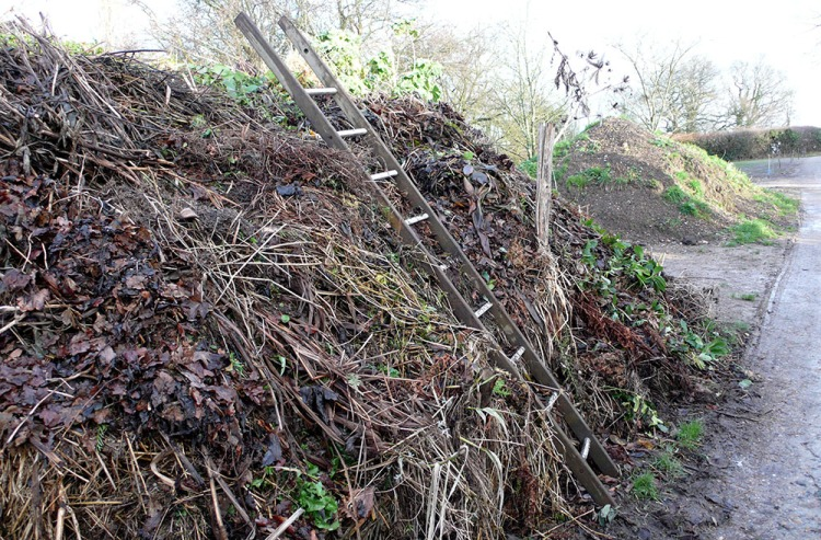 Compost Heaps by the Nursery