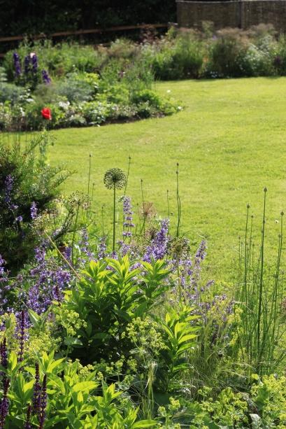 Belinda's Cutting Garden on Garlic & Sapphire