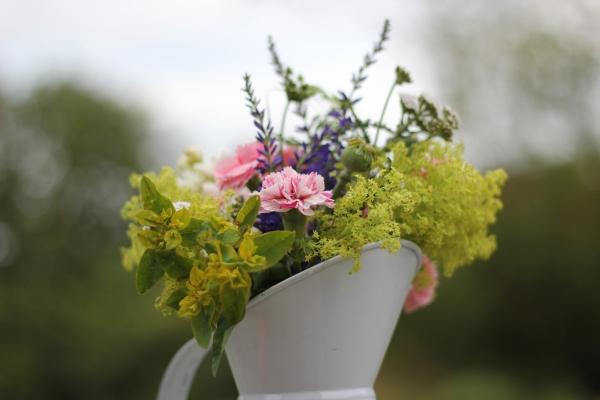 Homegrown Flowers by Belinda