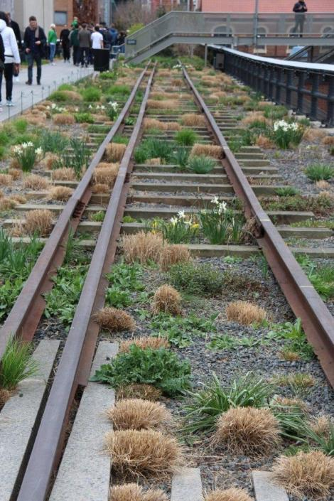 New York High Line Planting