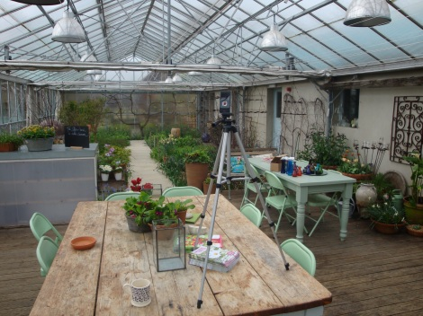Filming in the glasshouse at Perch Hill