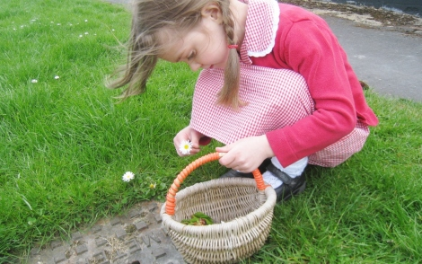 Picking daisies in Spring