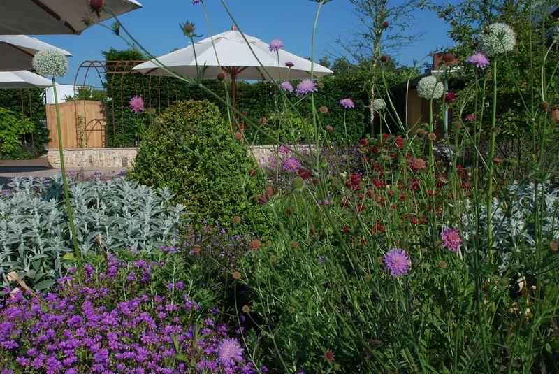 Horatio's Garden in Bloom