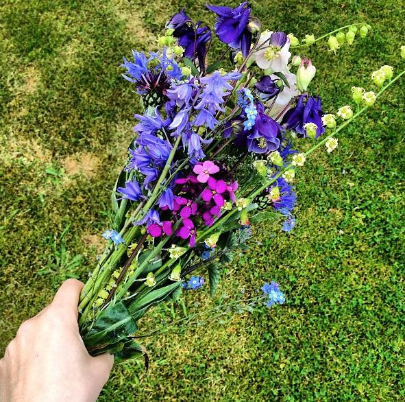 Bluebells, Knapweed, Aquilegia, Lunaria and Tellima (fringecup)