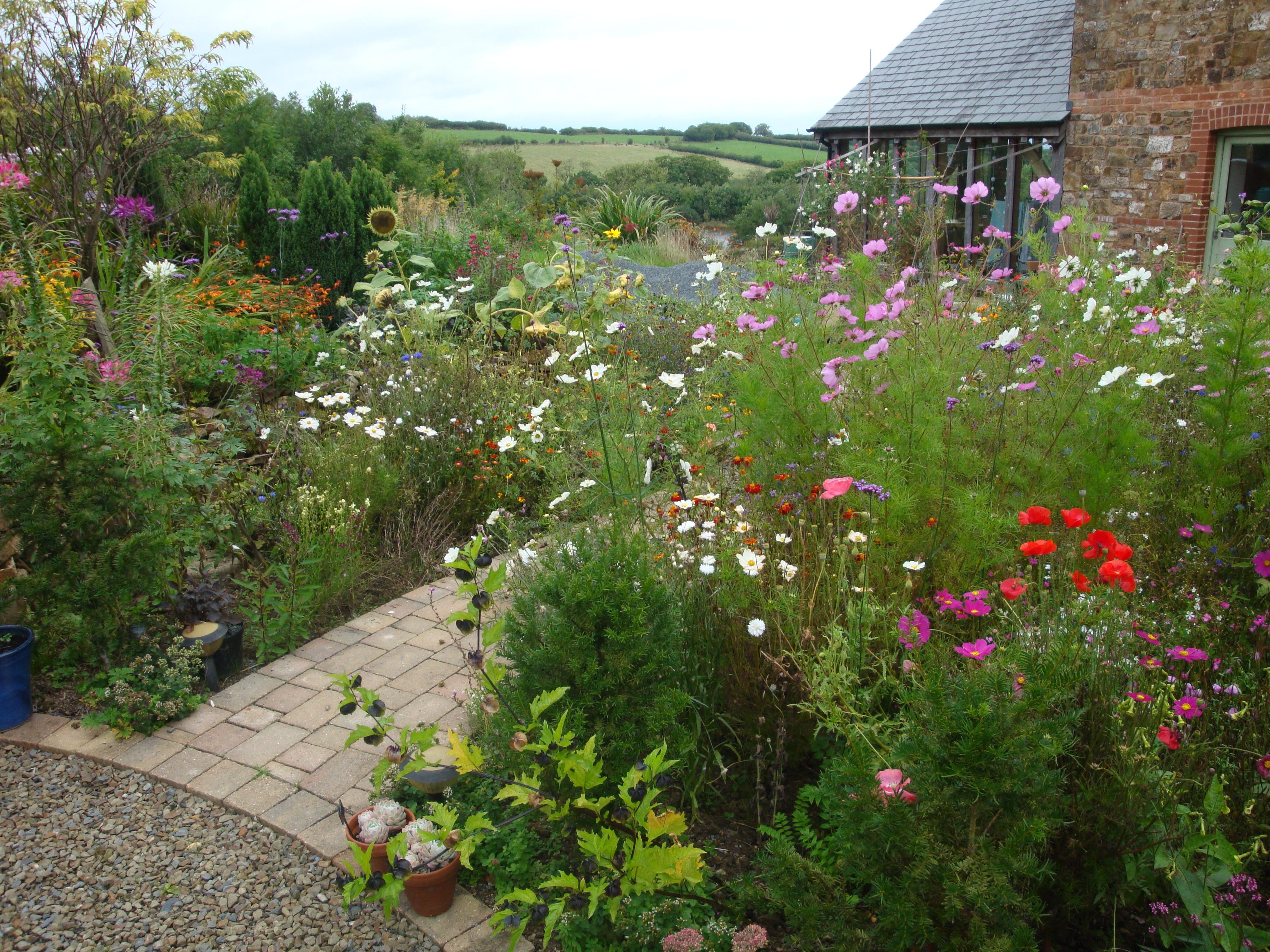 The Garden At Ostler S Cottage Sarah Raven