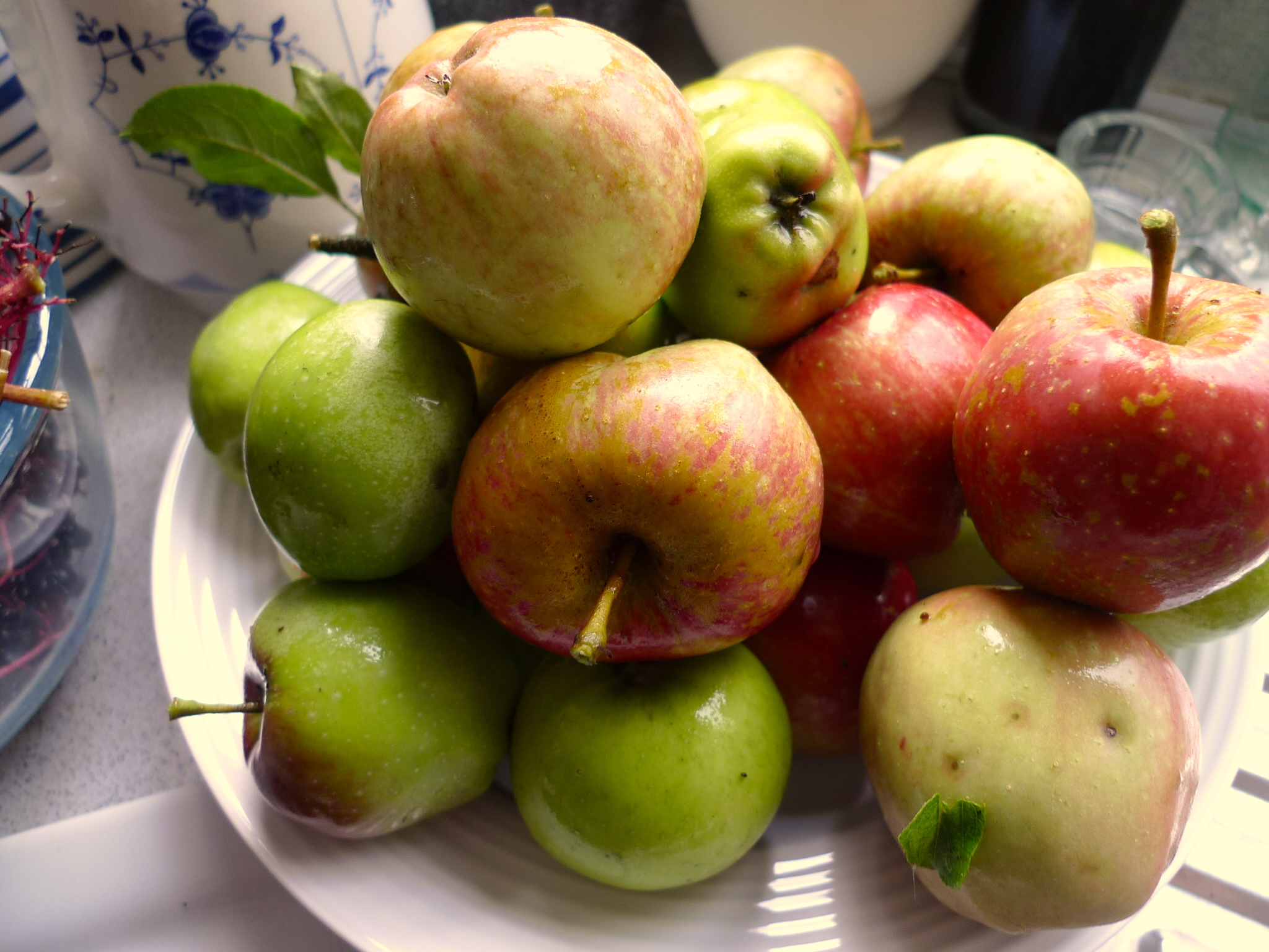 Homegrown apples