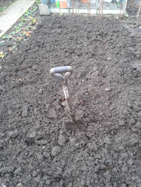 Freshly Dug Soil