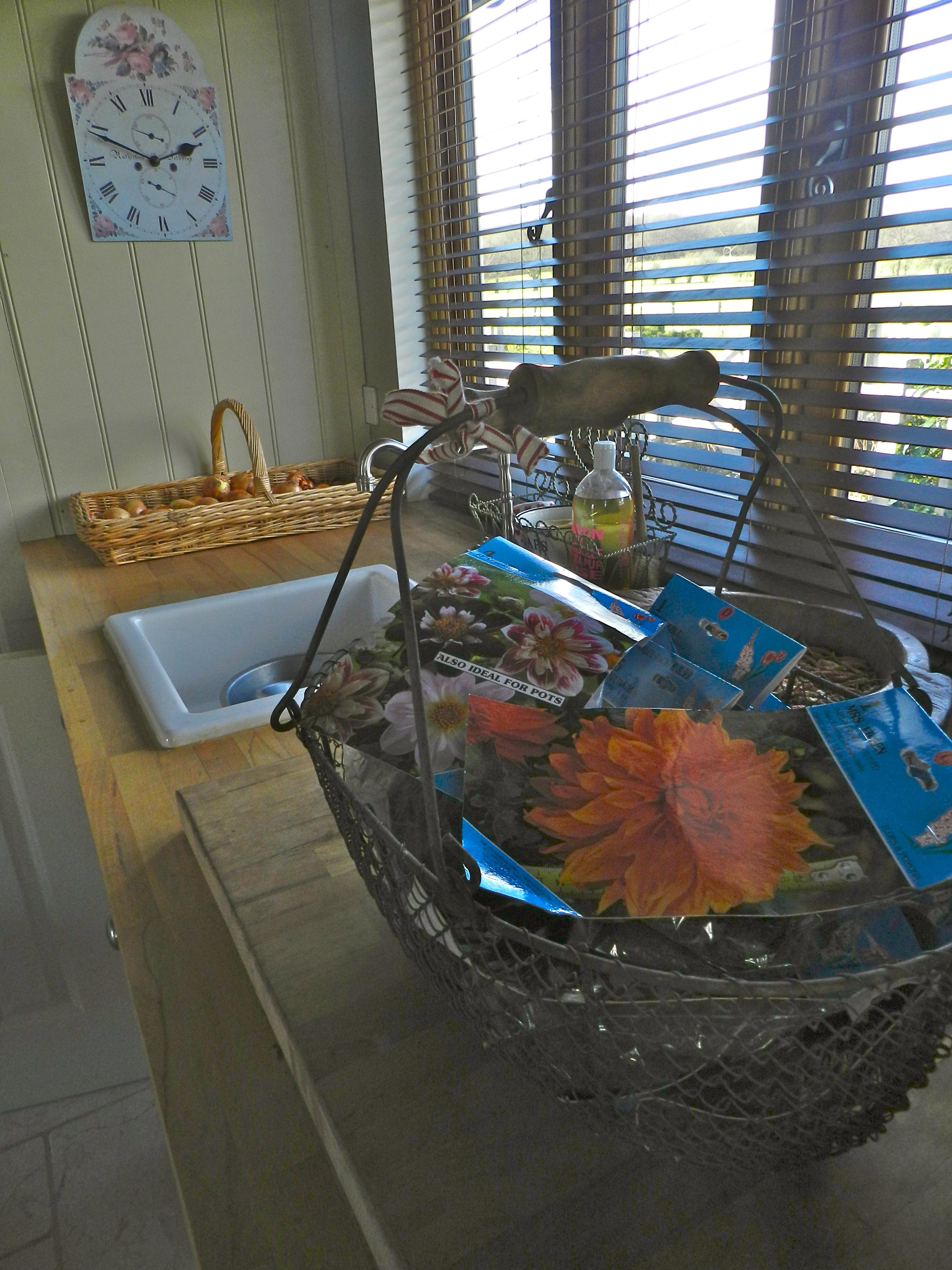 Basket of dahlia tubers