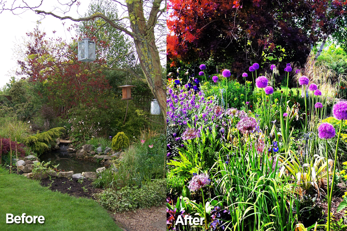 Garden Before & After - The Pond Area