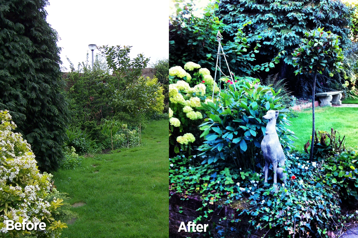 Garden Before & After - The Left Border