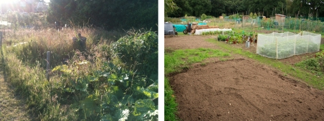 The Allotment: Before