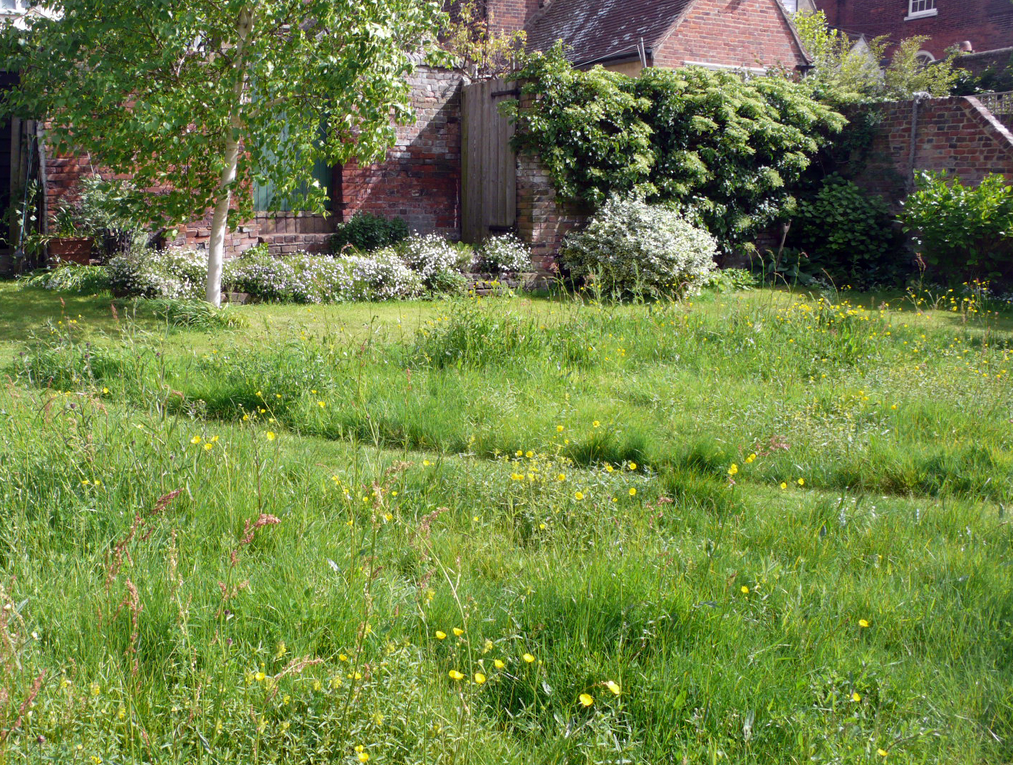 Some gardens in Faversham are tucked  behind historic buildings.